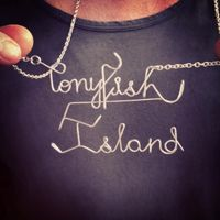 Ponyfish Island