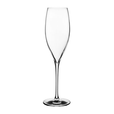 GLASS CHAMPAGNE 310ML, NUDE TERROIR