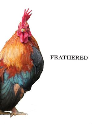 COOKBOOK, FEATHERED BY P.J BOOTH