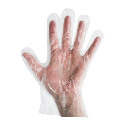 DISPOSABLE GLOVE LDPE CLEAR