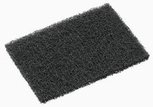 GRIDDLE SCREEN SCOUR PAD, OATES 10PK