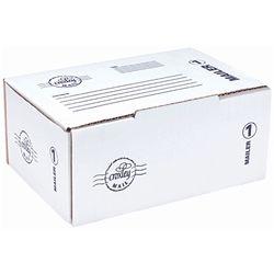 MAILER BOX SIZE 1 215 X 158 X 100MM FM