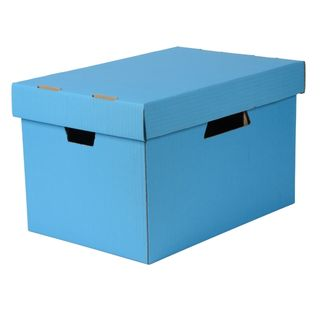 ESSELTE ARCHIVE BOX WITH LID BLUE