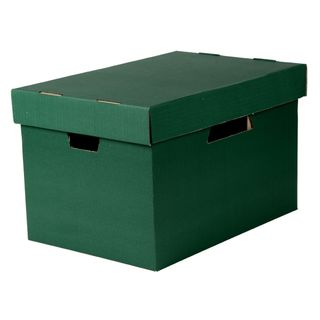 ESSELTE ARCHIVE BOX WITH LID GREEN