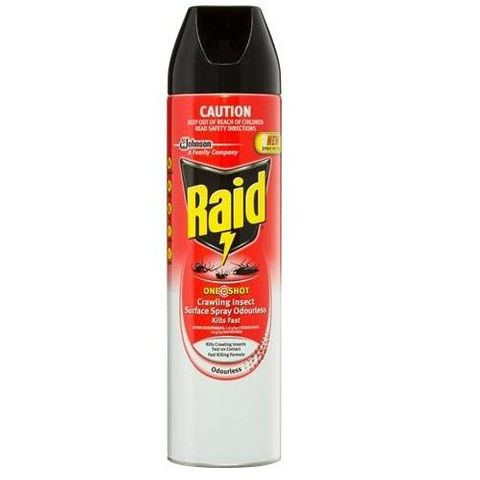 Raid Professional One Shot Crawling Insect Killer Residual 450gm
