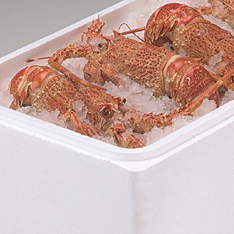 Polystyrene Standard Cray Box and Lid 28L
