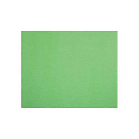 LIME QUILL BOARD 210GSM 510X635MM