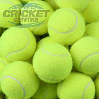 FEED BUDDY TENNIS BALLS (6 Pack)