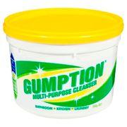 GUMPTION 500G