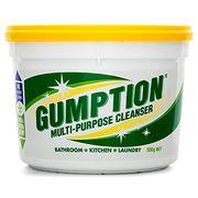 Gumption 500gm