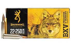 BROWNING BXV 22-250REM 50GR VE 20PKT