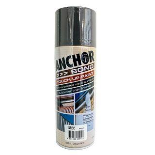 Touch Up Paint Basalt 300 GRAM CAN