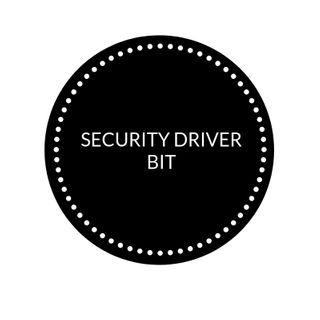 SECURITY DRIVER BIT