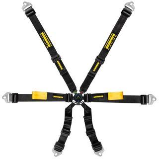 Schroth Enduro 2x2 Harness