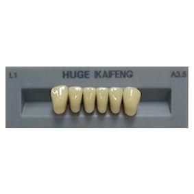 Kaifeng Shade A3.5 Anterior