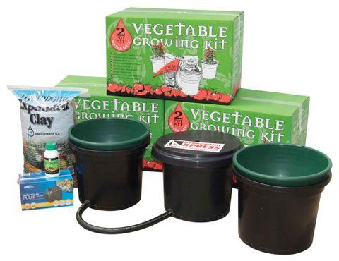 4 Pot Vegetable Kit