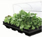 Vegepod Large Raised Garden Bed with VegeCover 2x1m