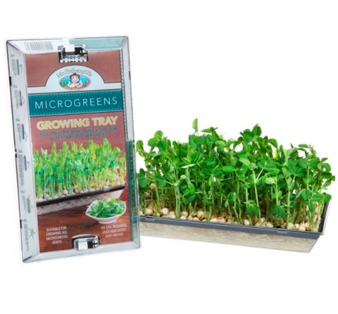 Mr. Fothergill's Microgreens Growing Tray