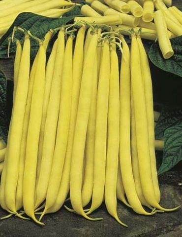 Mr. Fothergill's Bean Butter Cherokee Seed Packet