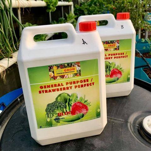 Eze-Grow General Purpose/Strawberry Perfect A & B 1L / 5L Sets
