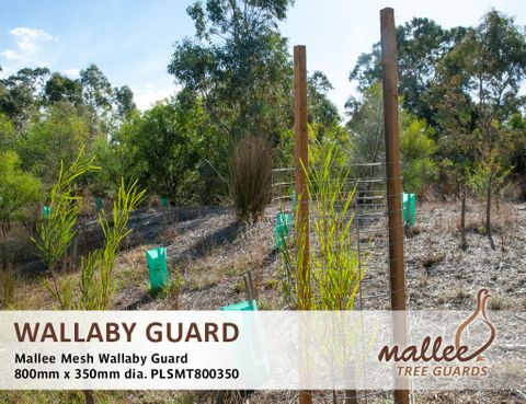 Mallee Mesh Wallaby Guard 800mm High x 350mm Diameter - 20/Pack