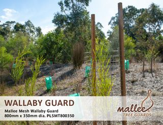 Mallee Mesh Wallaby Guard 800mm High x 350mm Diameter