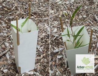 2L Cardboard Carton Treeguard - 250/Box