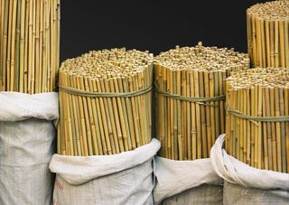 Bamboo Canes 16-18 x 1800mm - 100/Bale