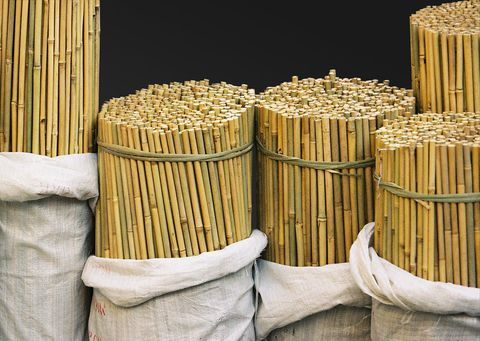 Bamboo Canes 11-13mm x 750mm Long - 250/Bale