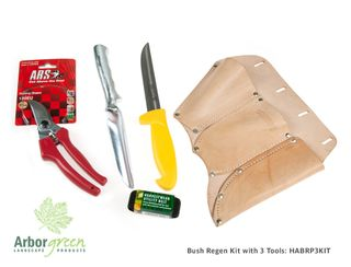 Bush Regenerators Kit With 3 Tools