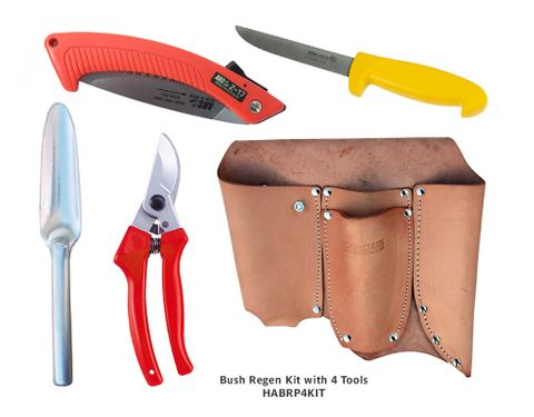 Bush Regenerators Kit With 4 Tools