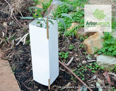 Mallee 10L Carton Cardboard Treeguard - 150/Box