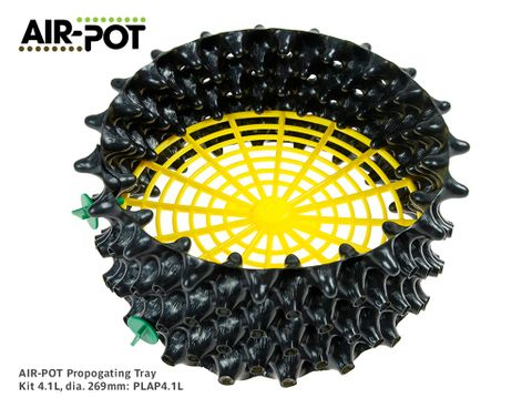 AIR-POT Root Pruning Propogating Tray Kit 4.1L, 269mm diam, 115mm high