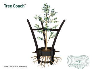 Tree Coach - Small