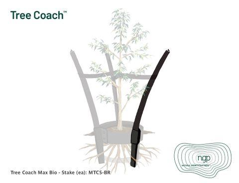 Tree Coach MAX Bio - Stake (ea)