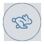 Rapid Reports icon