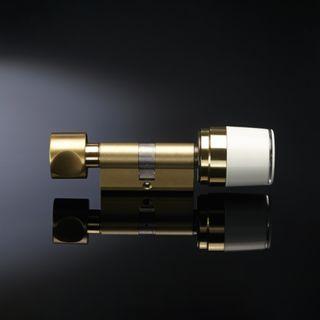 LIBRA ELECTRONIC CYLINDER / TURN - RADIO ARGO OPTION