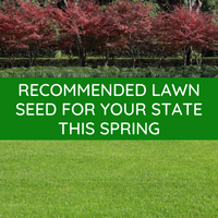 RECOMMENDED LAWN SEED FOR SPRING SOWING IN YOUR STATE