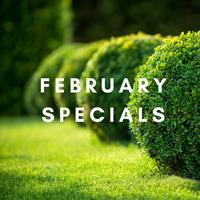 FEBRUARY SPECIALS 2020