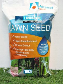 Rapid Green All Season Couch Blend 10kg