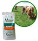 Advanced Seed Drylands Pasture Seed Blend 20kg