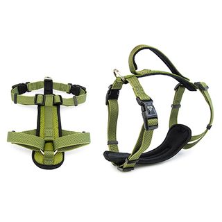 Dog - Harnesses