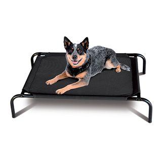 Dog - Beds