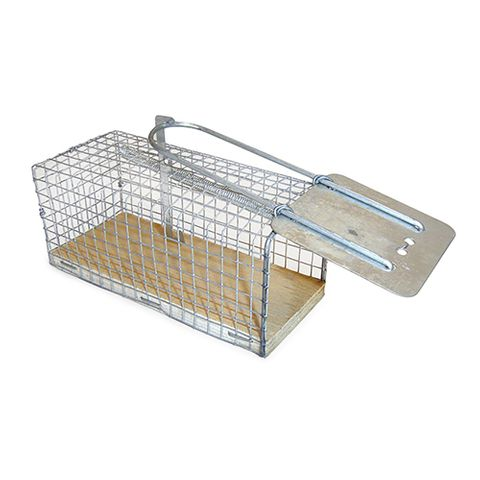 Rodent Cage Traps