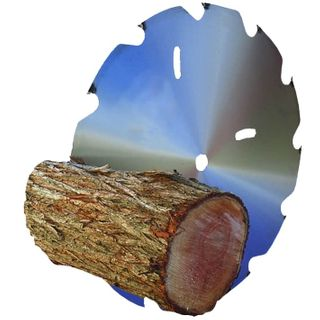 DRY FIREWOOD PROCESSING