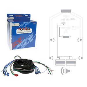 5M FAST HARNESS WITH RCA