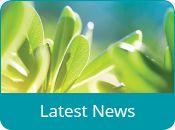 Latest-news(175x130)