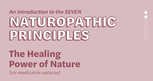 Naturopathic Principles: The Healing Power of Nature
