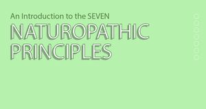 An Introduction to the Naturopathic Principles