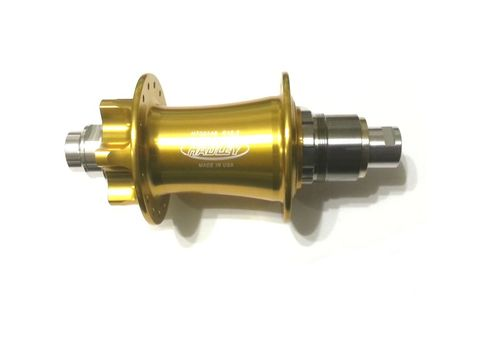 Hadley Rear Hub 32 hole 12x142mm - XD 12sp - Gold